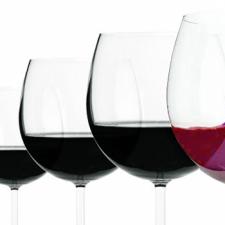 Cabernet Franc. The future of argentine wine?