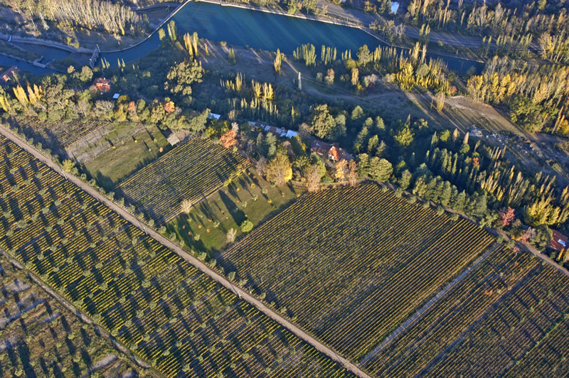 Argentine Terroirs: Perdriel, past and future in the same vine cloth