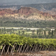 The new face of the Calchaquí Valley