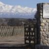 Gouguenheim: Pasión por el vino