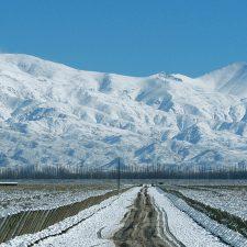 Tres innovaciones del vino argentino