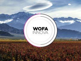 Desafío WOFA Innova