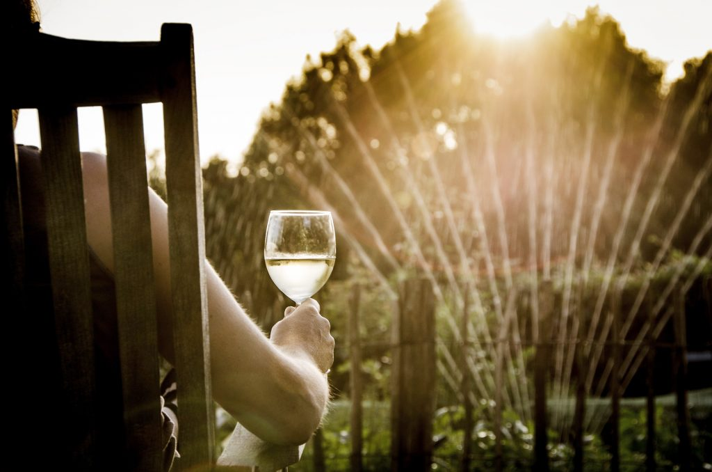 Argentine wines for the summer
