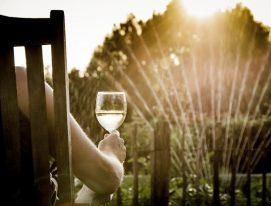 vinos argentinos de verano