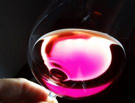 Pinot Noir in Argentina