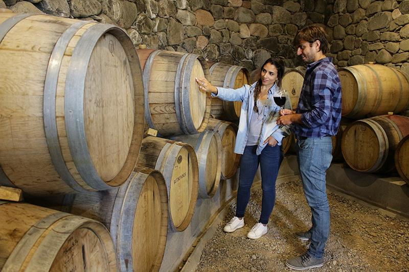 ruta del vino tucumano